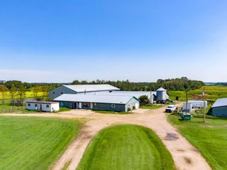 Photo 15: 461017A RR 262: Rural Wetaskiwin County House for sale : MLS®# E4255011