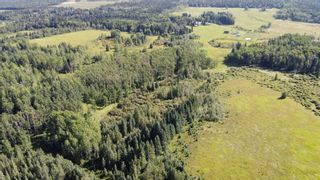 Photo 19: 5-31539 Rge Rd 53c: Rural Mountain View County Land for sale : MLS®# A1024431