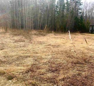 Photo 5: 114 HERON POINT Close: Rural Wetaskiwin County Rural Land/Vacant Lot for sale : MLS®# E4242538