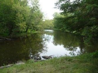 Main Photo: 6519 Pioneer Village Lane in Ramara: Rural Ramara Property for sale : MLS®# S4165688