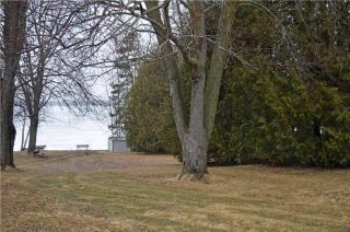 Photo 4: 99 Campbell Beach Road in Kawartha Lakes: Rural Carden Property for sale : MLS®# X4081023