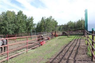 Photo 31: 41405 Range Road 231: Rural Lacombe County Detached for sale : MLS®# CA0173239