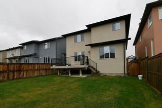 Photo 30: 151 SADDLECREST Gardens NE in Calgary: Saddle Ridge House for sale : MLS®# C4138096