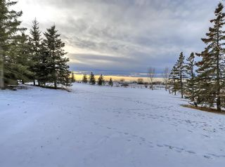 Photo 39: 263087 Range Road 293 in Rural Rocky View County: Rural Rocky View MD Detached for sale : MLS®# A1055802