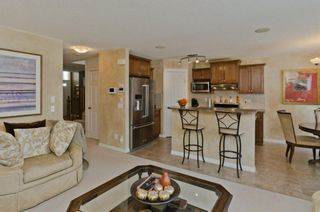Photo 19: 32 SKYVIEW SPRINGS Gardens NE in Calgary: Skyview Ranch Detached for sale : MLS®# A1118652