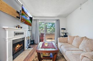 Photo 3: 205 3215 Alder St in : SE Quadra Condo for sale (Saanich East)  : MLS®# 874578