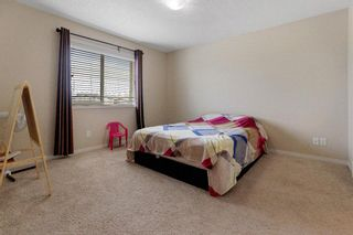 Photo 20: 155 Martha's Meadow Close NE in Calgary: Martindale Detached for sale : MLS®# A1117782