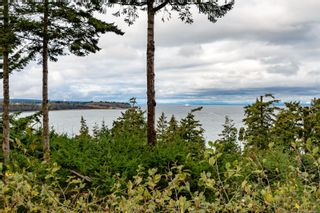 Photo 79: 321 Wireless Rd in : CV Comox (Town of) House for sale (Comox Valley)  : MLS®# 860085