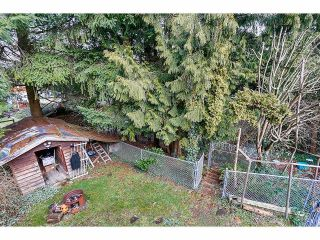 Photo 19: 13923 77A Avenue in Surrey: East Newton House for sale : MLS®# F1415758