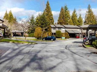"""Photo 16: 106 1950 CEDAR VILLAGE Crescent in North Vancouver: Westlynn Townhouse for sale in """"MOUNTAIN ESTATES"""" : MLS®# R2439112"""