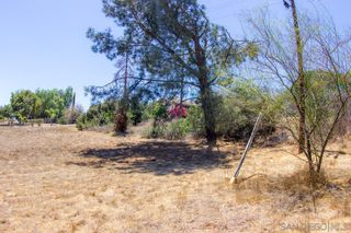 Photo 13: FALLBROOK Property for sale: 0000 Calavo Rd