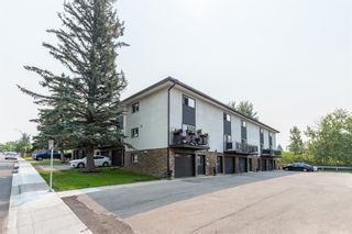 Photo 17: 5 1603 Mcgonigal Drive NE in Calgary: Mayland Heights Row/Townhouse for sale : MLS®# A1141533
