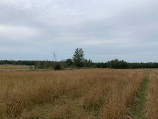 Photo 2: RR 275 Twp 482: Rural Leduc County Rural Land/Vacant Lot for sale : MLS®# E4261137