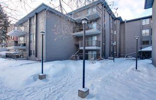 Photo 1: 106 819 4A Street NE in Regal Manor: Apartment for sale : MLS®# C3611396