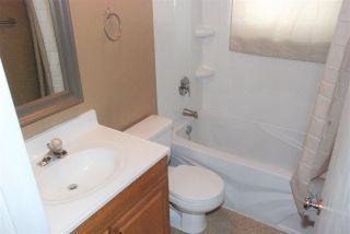 Photo 15: 11403 51 Avenue in Edmonton: Zone 15 House for sale : MLS®# E4241624