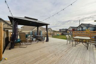 Photo 7: 12840 205 Street in Edmonton: Zone 59 House Half Duplex for sale : MLS®# E4265998