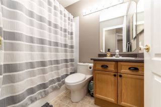Photo 26: 75 Hamilton Crescent: St. Albert House for sale : MLS®# E4235774