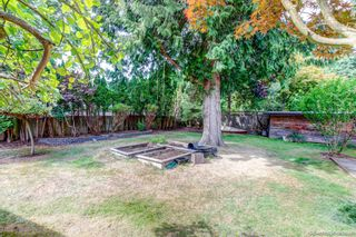 """Photo 38: 1619 133A Street in Surrey: Crescent Bch Ocean Pk. House for sale in """"AMBLE GREEN PARK"""" (South Surrey White Rock)  : MLS®# R2613366"""