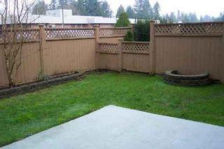 Photo 8: #17 21409 Dewdney Trunk: House for sale (West Maple Ridge)  : MLS®# V516020