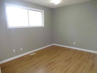 Photo 20: 164 Dovercliffe Way SE in Calgary: Dover Detached for sale : MLS®# A1116504
