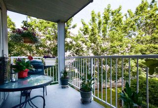 """Photo 18: 208 5465 201 Street in Langley: Langley City Condo for sale in """"Briarwood Park"""" : MLS®# R2072706"""