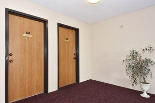 Photo 13: 303 5791 GRANVILLE AVENUE in Richmond: Riverdale RI Condo for sale : MLS®# R2328996
