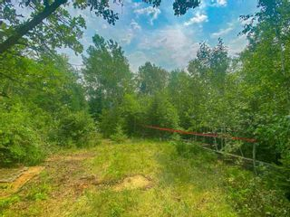 Photo 11: Lot 2 Fire Rd #2 McKenzie Portage RD in KENORA: Vacant Land for sale : MLS®# TB212223