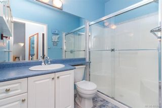 Photo 13: 14 3281 Maplewood Rd in VICTORIA: SE Cedar Hill Row/Townhouse for sale (Saanich East)  : MLS®# 806728