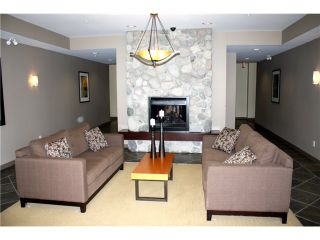 """Photo 10: 211 250 SALTER Street in New Westminster: Queensborough Condo for sale in """"PADDLERS LANDING"""" : MLS®# V901158"""