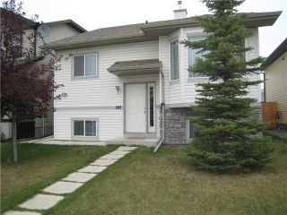 Photo 18: 197 STONEGATE Drive NW: Airdrie Residential Detached Single Family for sale : MLS®# C3492273