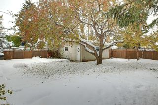 Photo 23: 8 Lenton Place SW in Calgary: North Glenmore Park Detached for sale : MLS®# A1070679