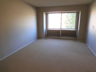 Photo 6: 6306 187 Street in Edmonton: Zone 20 House for sale : MLS®# E4266313