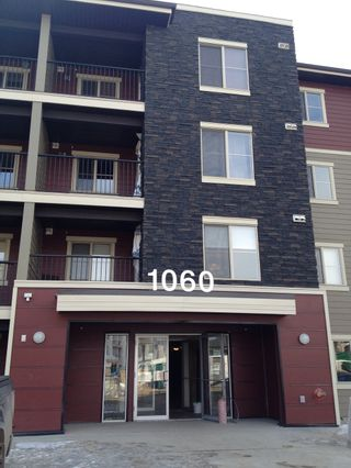 Photo 17: 403 1060 McConachie Boulevard NW: Edmonton Condo for sale : MLS®# E3367478