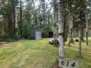 Photo 5: 614 6 Street: Rural Wetaskiwin County Rural Land/Vacant Lot for sale : MLS®# E4255127