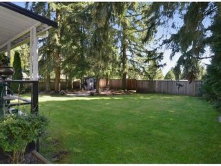 Photo 10: 20280 36B Ave in Langley: Home for sale : MLS®# F1307916