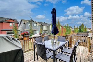 Photo 38: 28 Cougar Ridge Place SW in Calgary: Cougar Ridge Detached for sale : MLS®# A1154068