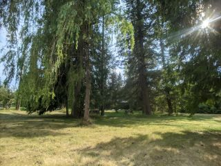 Photo 6: Lot 16-17 NELSON STREET in Slocan: Vacant Land for sale : MLS®# 2460223