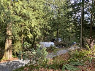 Photo 24: 11390 WILSON Street in Mission: Stave Falls House for sale : MLS®# R2564859