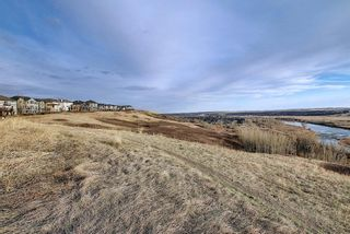 Photo 39: 56 Cranwell Lane SE in Calgary: Cranston Detached for sale : MLS®# A1111617