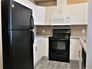 Photo 8: 308 4316 139 Avenue in Edmonton: Zone 35 Condo for sale : MLS®# E4219146