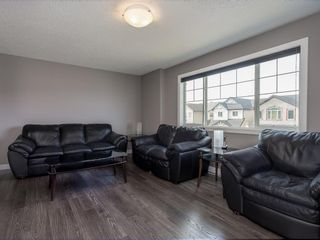 Photo 24: 155 Skyview Shores Crescent NE in Calgary: Skyview Ranch Detached for sale : MLS®# A1110098