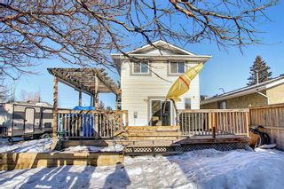 Photo 31: 211 Doverglen Crescent SE in Calgary: Dover Detached for sale : MLS®# A1060305