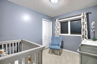 Photo 26: 328 Templeton Circle NE in Calgary: Temple Detached for sale : MLS®# A1074791