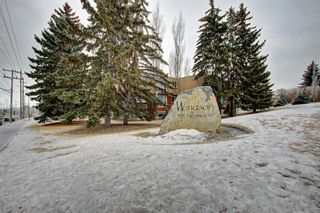 Photo 28: 301 315 50 Avenue SW in Calgary: Windsor Park Apartment for sale : MLS®# A1046281