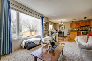 Photo 15: 208 Mt Selkirk Close SE in Calgary: McKenzie Lake Detached for sale : MLS®# A1104608