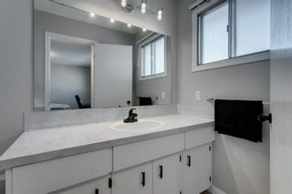 Photo 27: 3812 49 Street NE in Calgary: Whitehorn Detached for sale : MLS®# A1054455