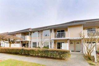 """Photo 1: 235 5641 201 Street in Langley: Langley City Townhouse for sale in """"THE HUNTINGDON"""" : MLS®# R2620251"""