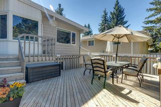 Photo 35: 4 Varslea Place NW in Calgary: Varsity Detached for sale : MLS®# A1145098