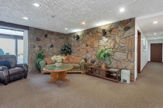 Photo 3: 204 907 Cedar St in : CR Campbell River Central Condo for sale (Campbell River)  : MLS®# 878028