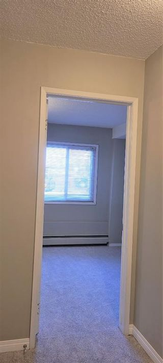 Photo 15: 101 3518 44 Street SW in Calgary: Glenbrook Apartment for sale : MLS®# A1093366